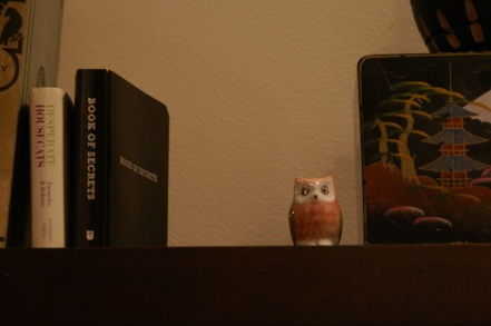 Owl Figurine on Shelf