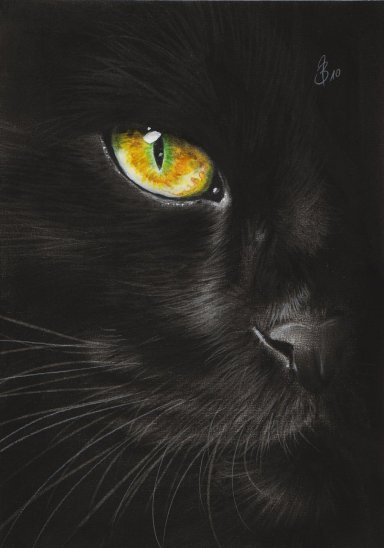 black_cat_eye_by_Drehli