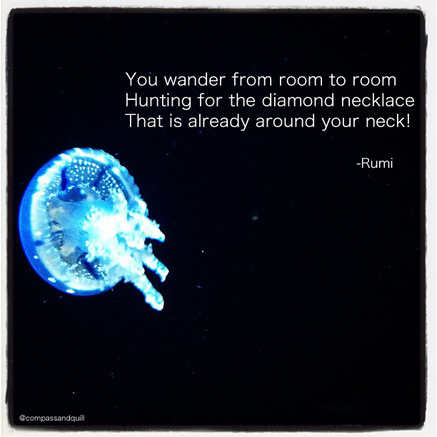Rumi Quote, Photo by Anna Harris