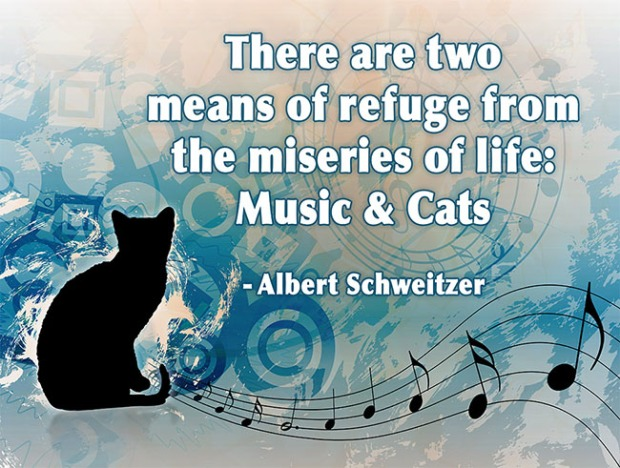 there-are-two-means-of-refuge-from-the-miseries-of-life-music-cats